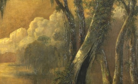 Louisiana Swamp Scene