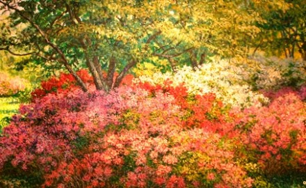 Azalea Bounty: Missouri Botanical (SOLD)