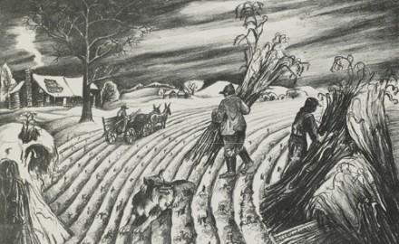 Last Corn
