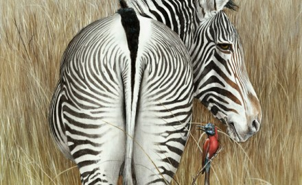 Grevy & The Bee Eaters