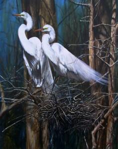 Nesting Snowy Egrets