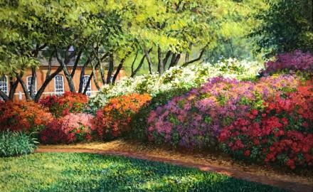 Azaleas, Missouri Botanical Gardens
