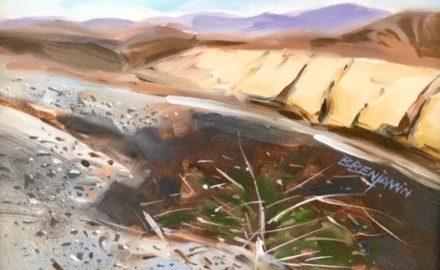Anza-Borrego Desert State Park II