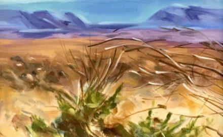 Anza-Borrego Desert State Park III