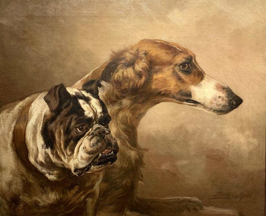 Portrait of a Borzoi and a Bulldog
